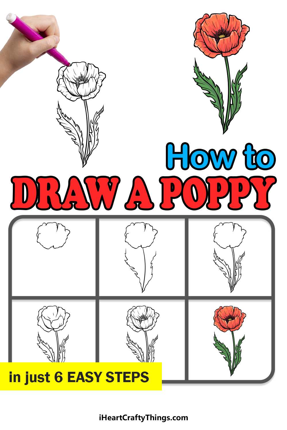how to draw a poppy in 6 easy steps
