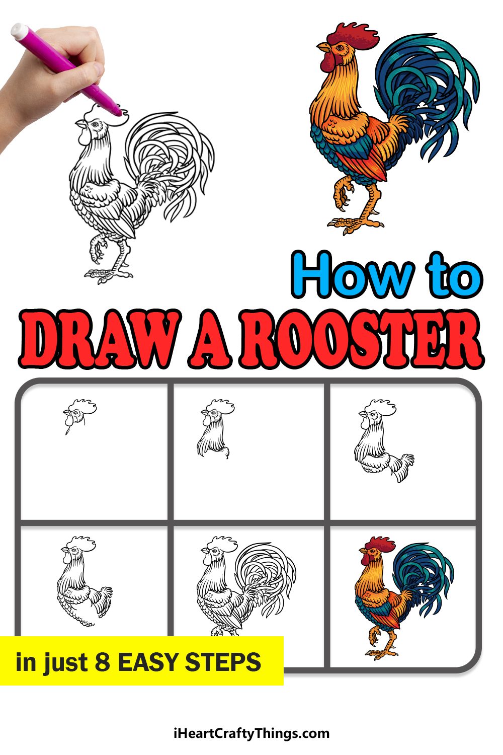 how to draw a rooster in 8 easy steps