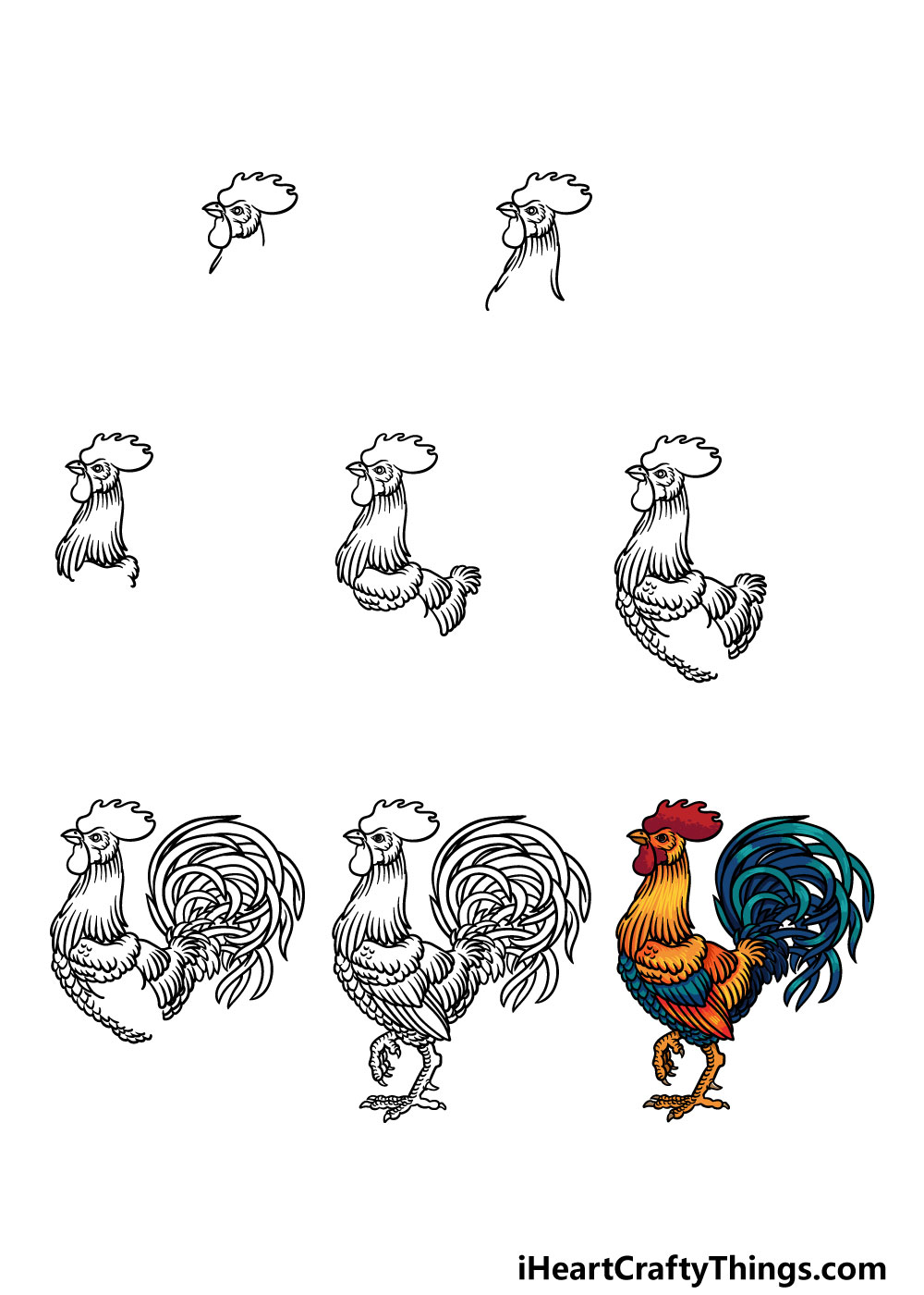 how to draw a rooster in 8 steps