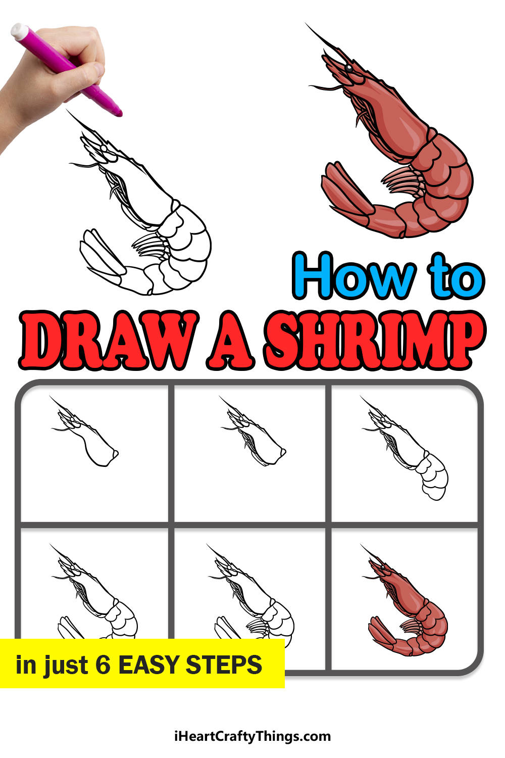 how to draw a shrimp in 6 easy steps