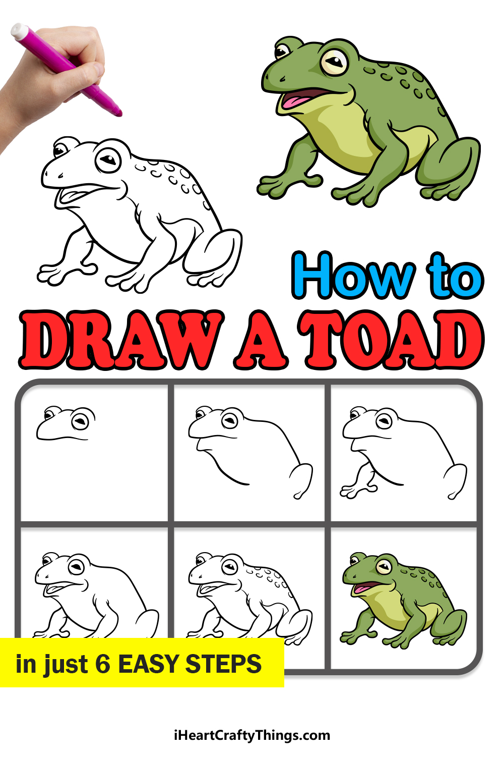 how to draw a toad in 6 easy steps
