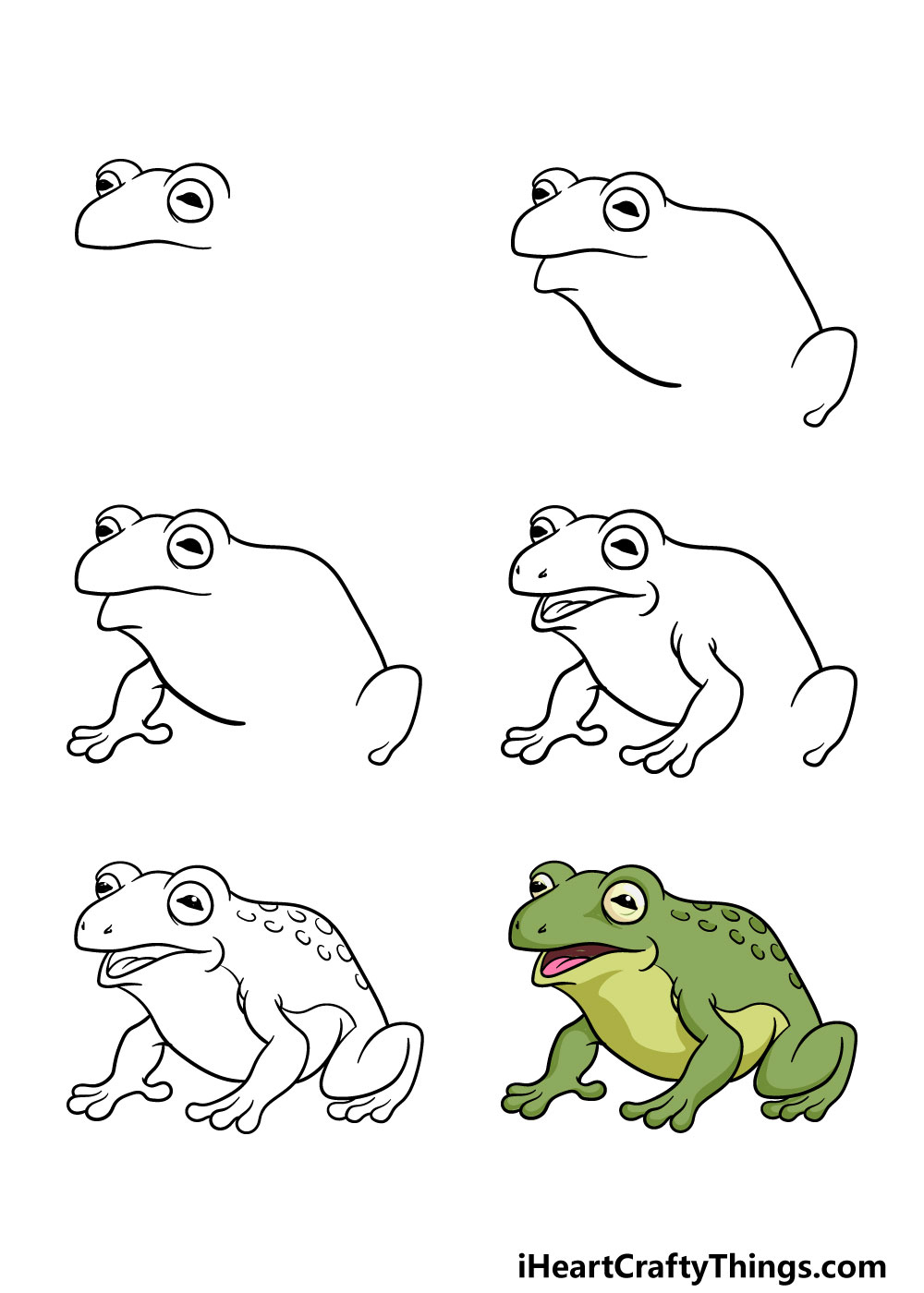 how to draw a toad in 6 steps