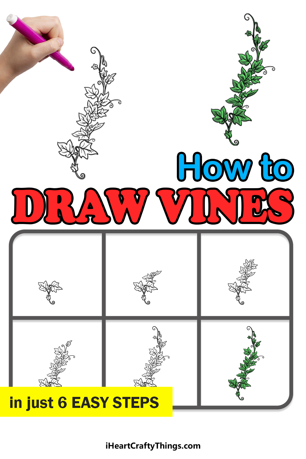 how to draw vines in 6 easy steps