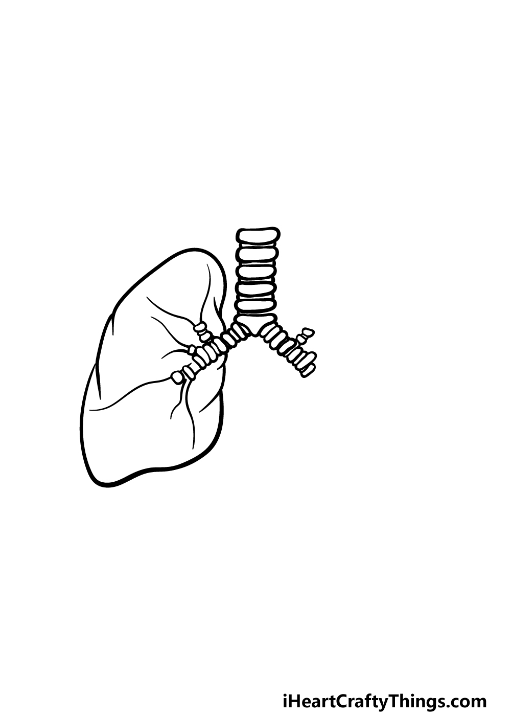 drawing lungs step 2