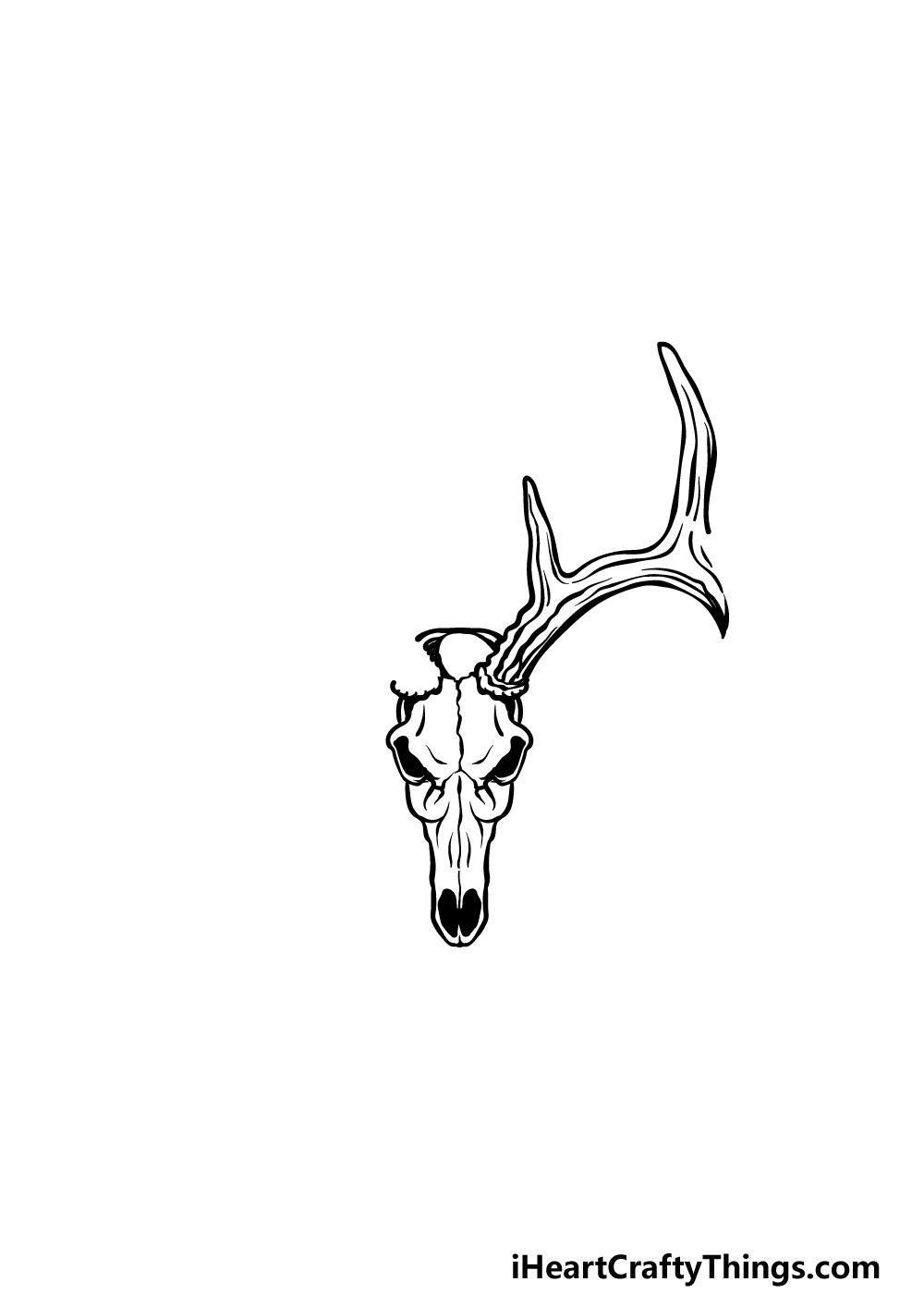 drawing a deer skull step 2