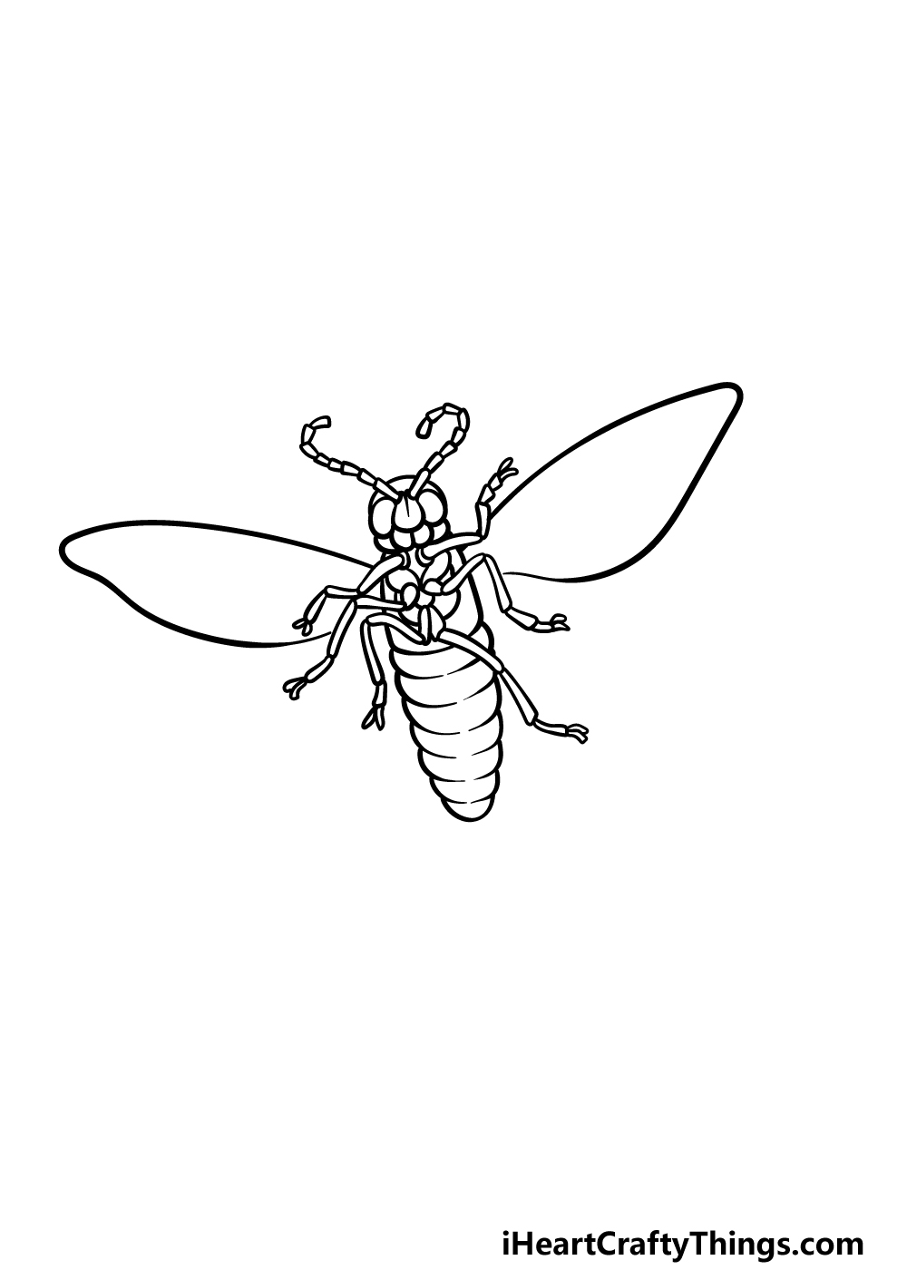 drawing a firefly step 3