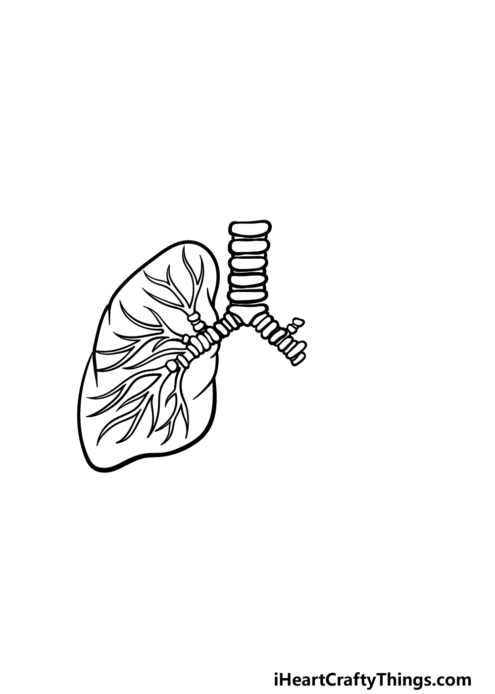 drawing lungs step 3