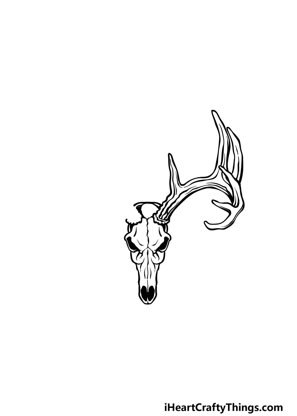 drawing a deer skull step 3