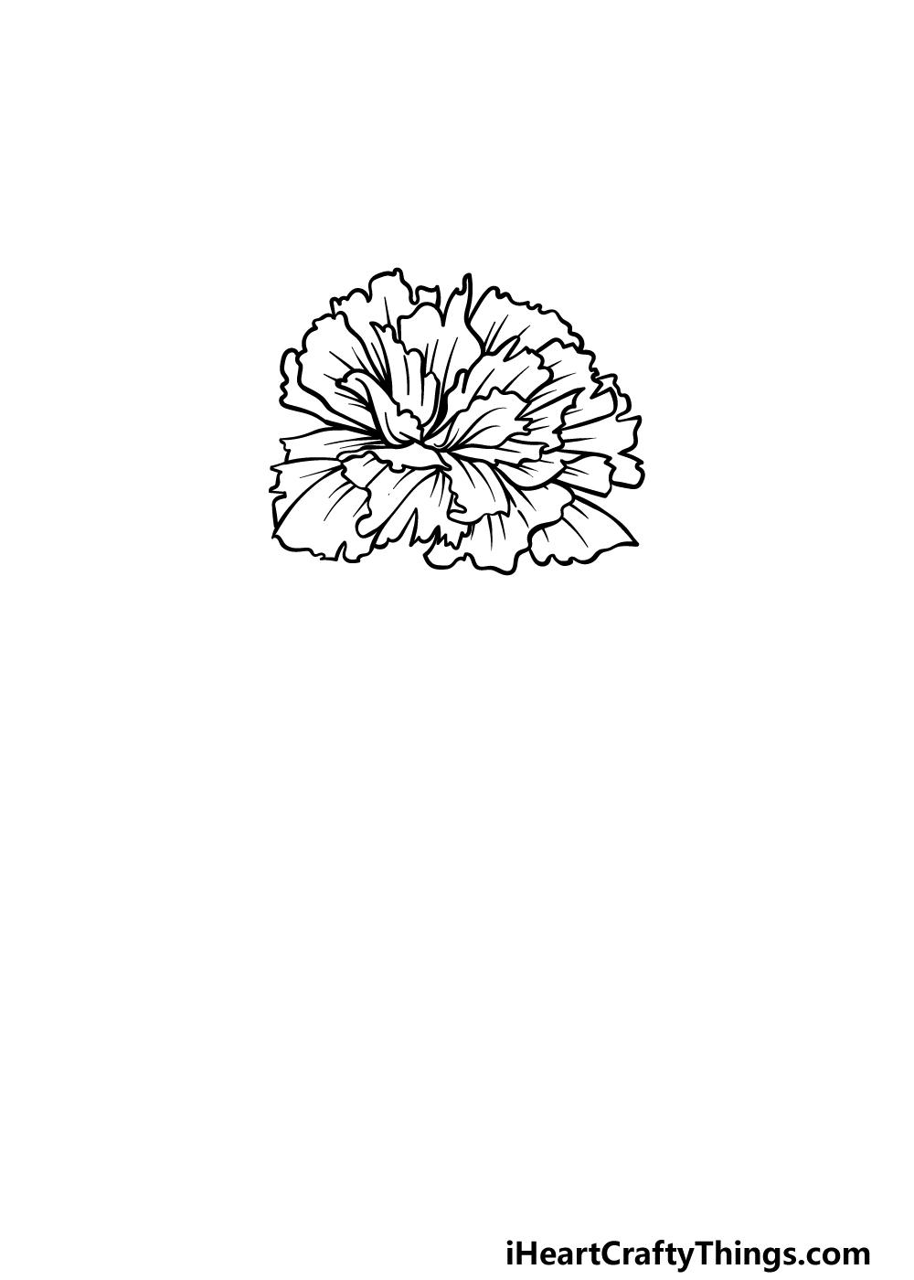 drawing carnation step 3