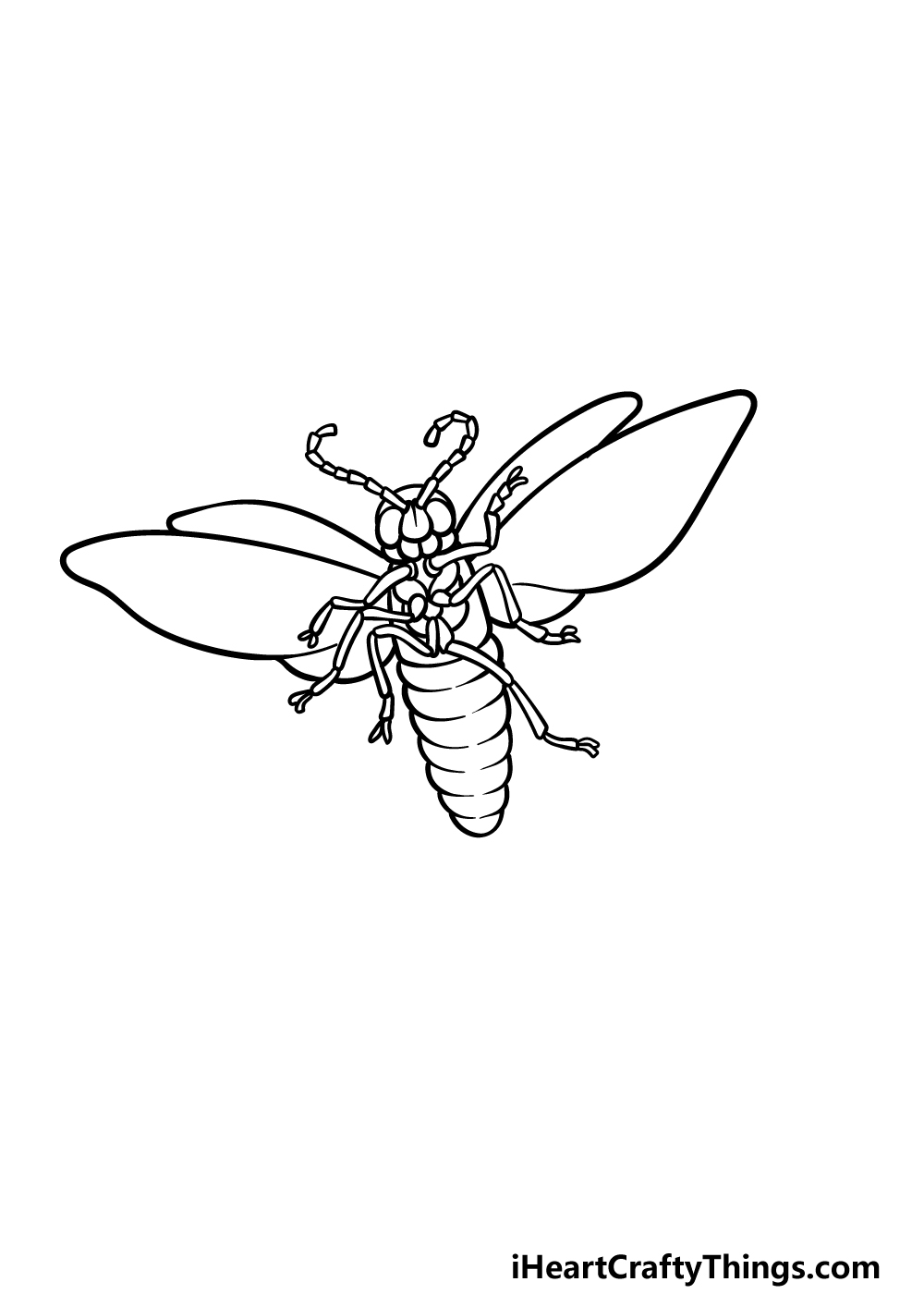 drawing a firefly step 4