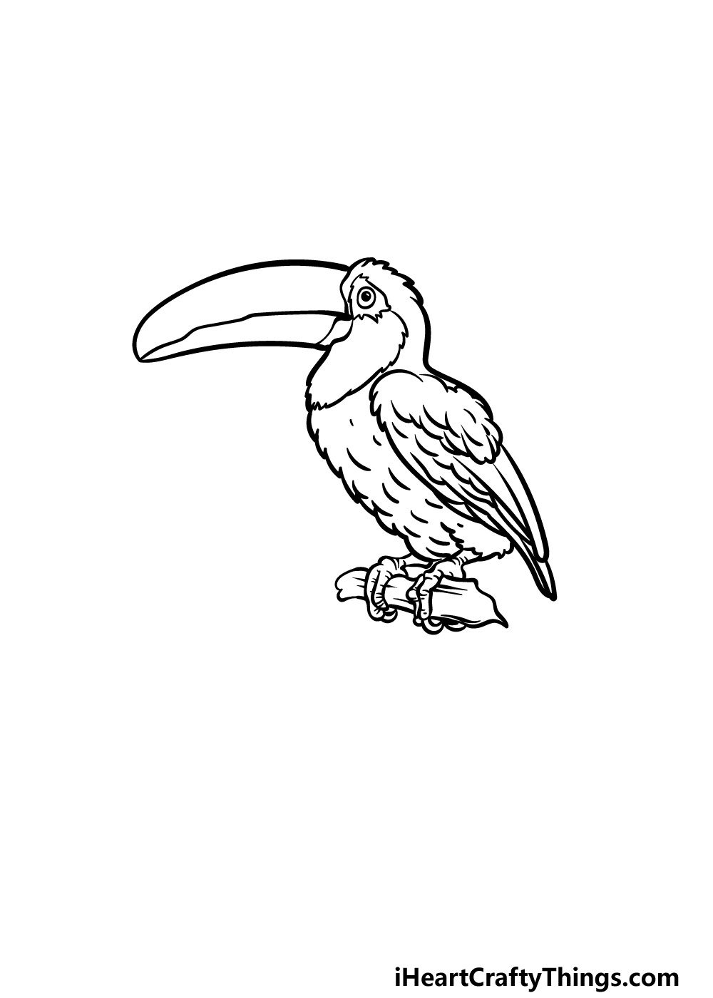 drawing a toucan step 4