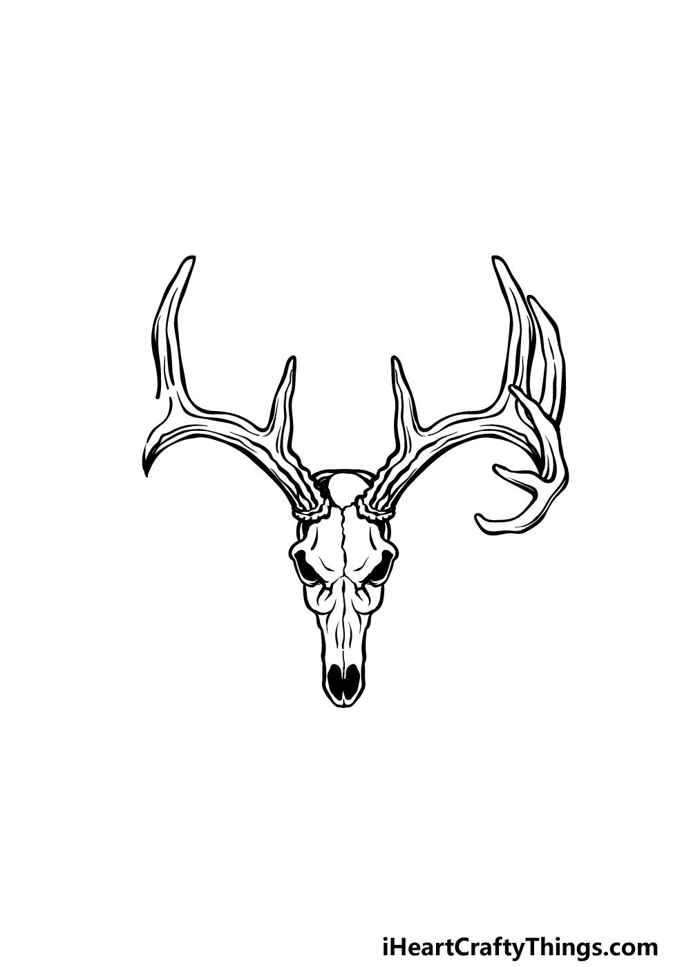 drawing deer skull step 4
