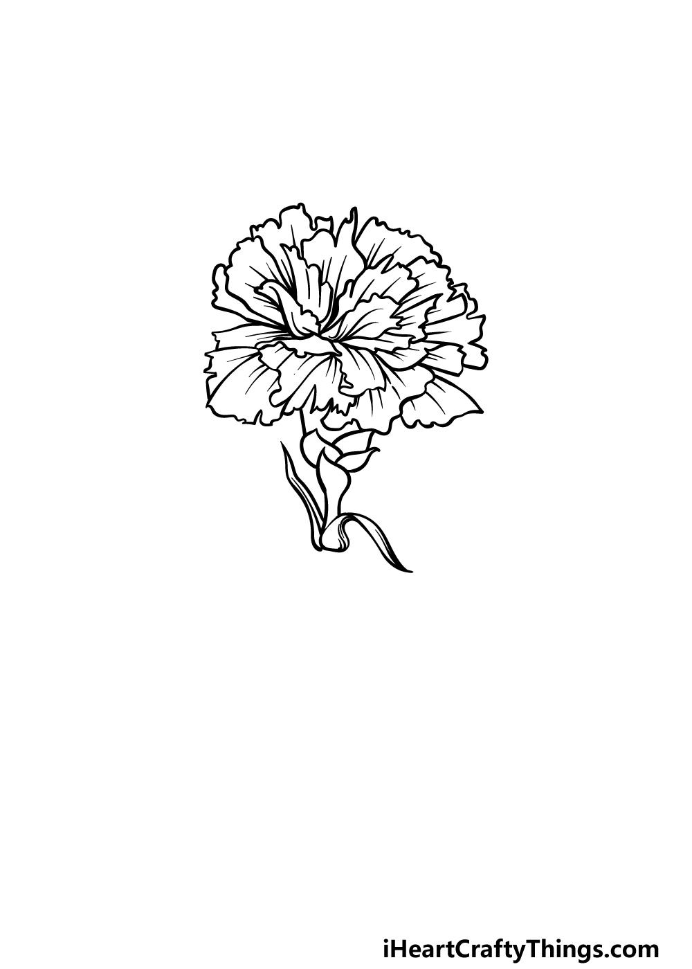 drawing carnation step 4