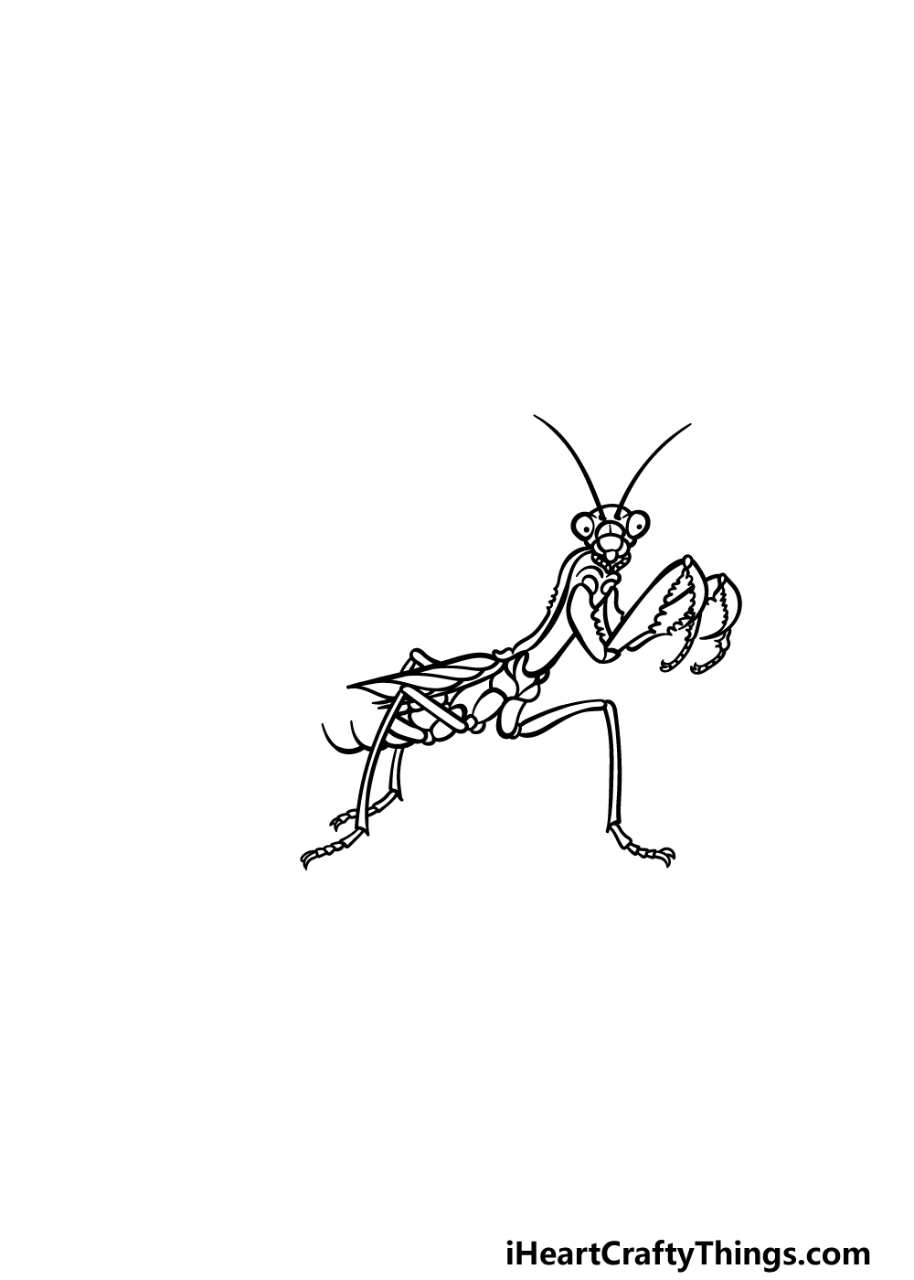 drawing an insect step 4