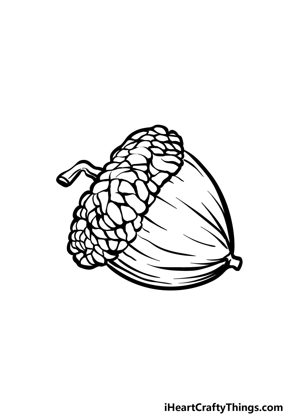 drawing acorn step 5