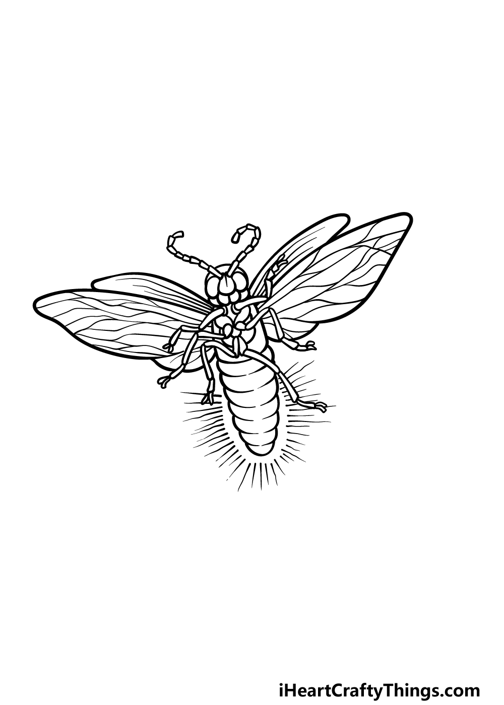drawing a firefly step 5