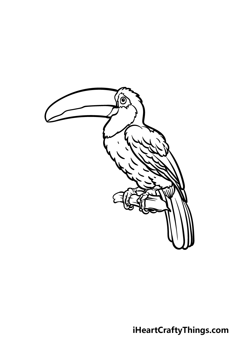drawing a toucan step 5