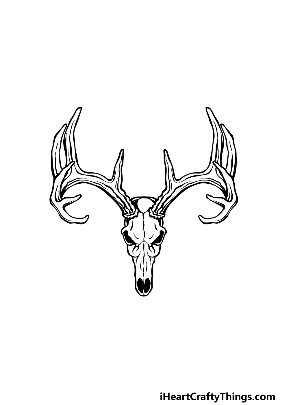 drawing a deer skull step 5
