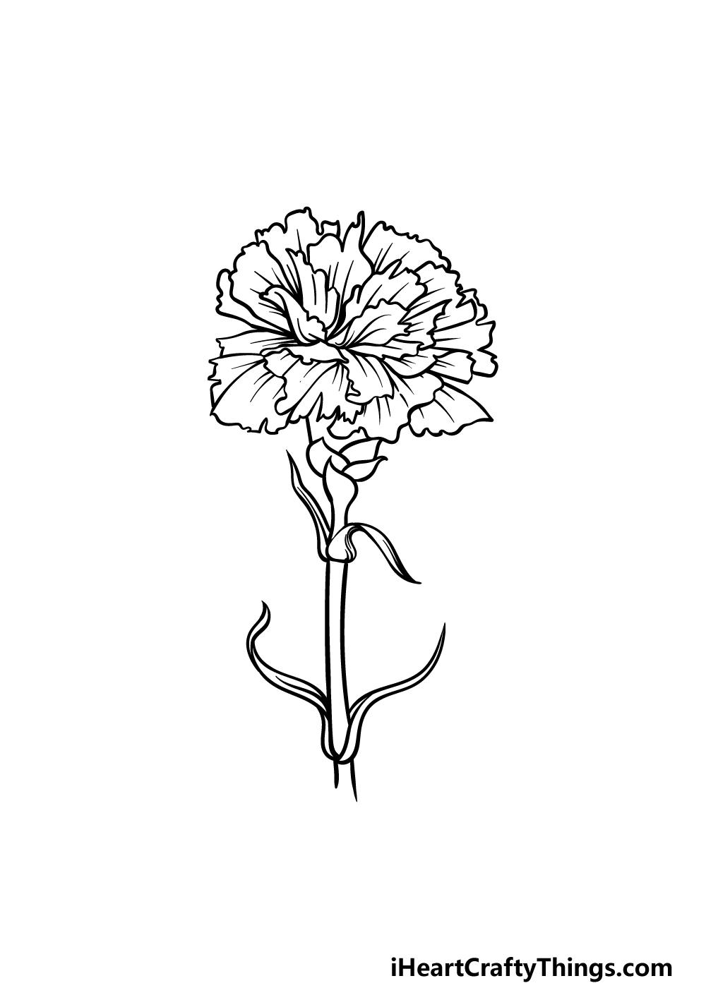 drawing carnation step 5