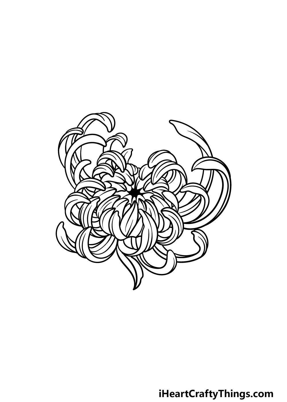 drawing Chrysanthemum step 5
