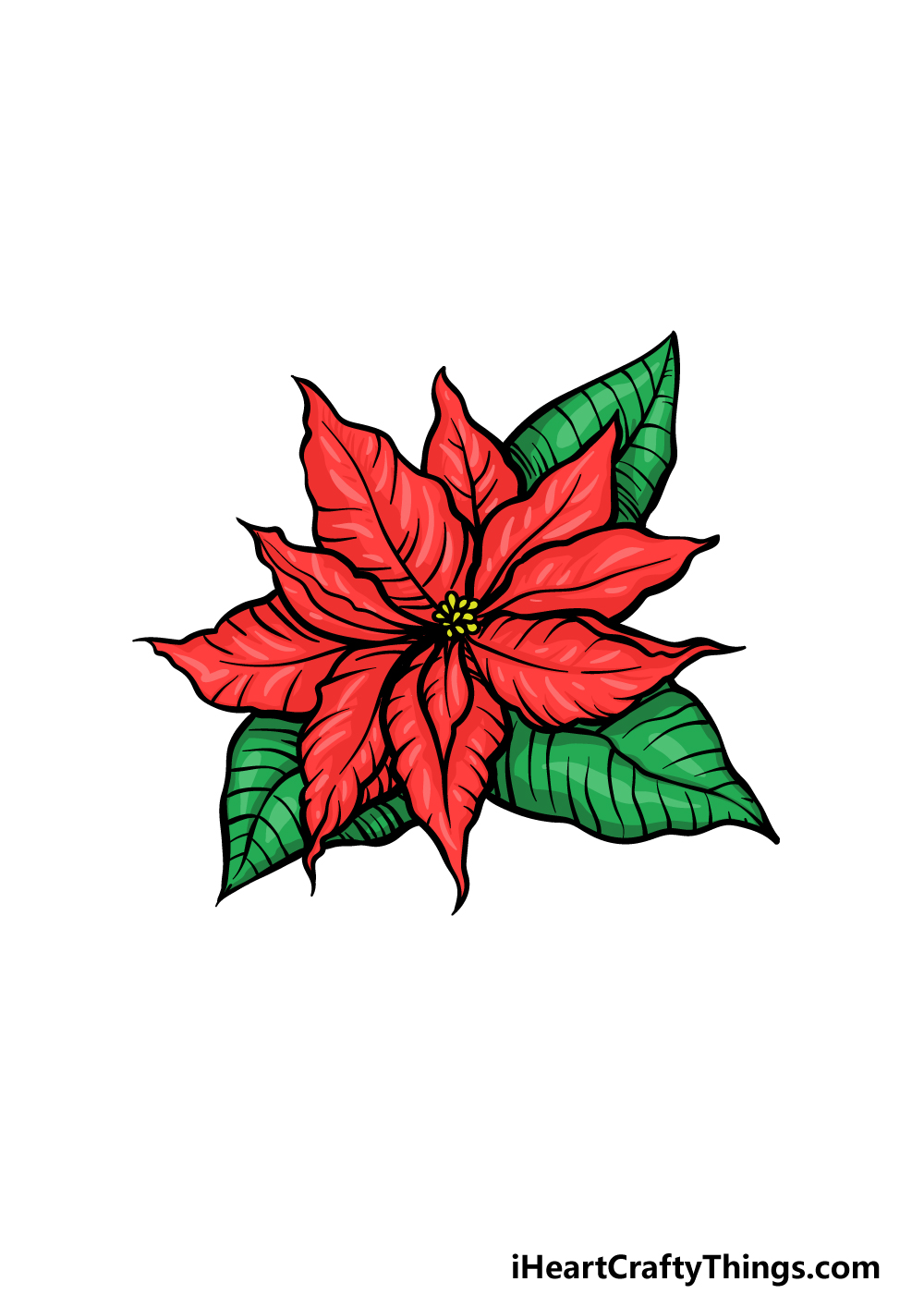 drawing poinsettia step 6