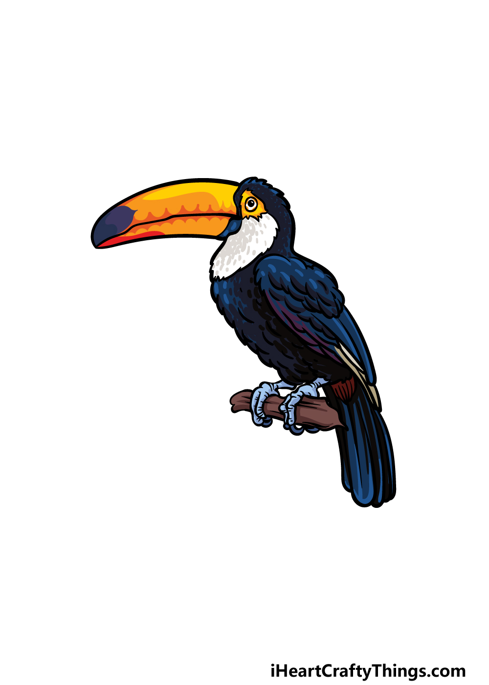 drawing a toucan step 6