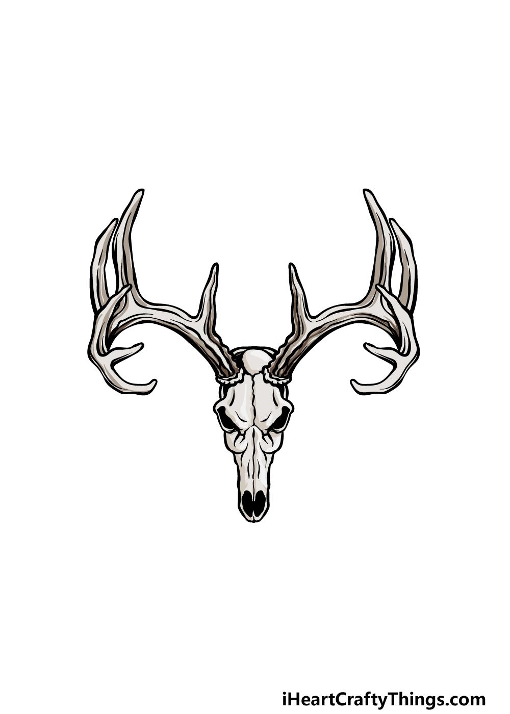 drawing deer skull step 6
