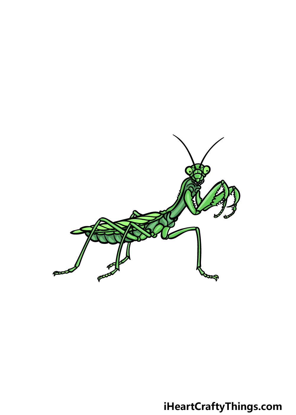 drawing an insect step 6