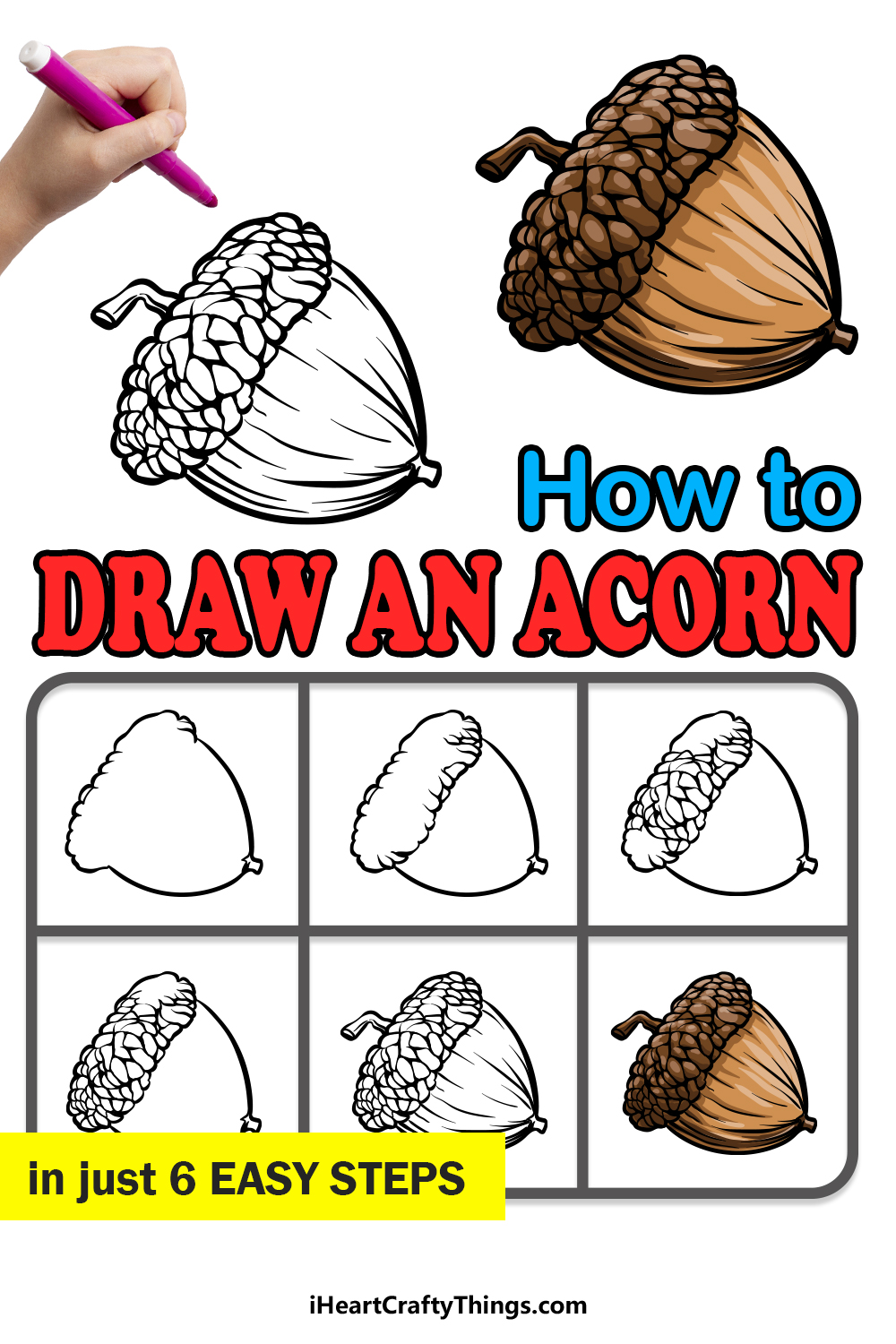 how to draw an acorn in 6 easy steps