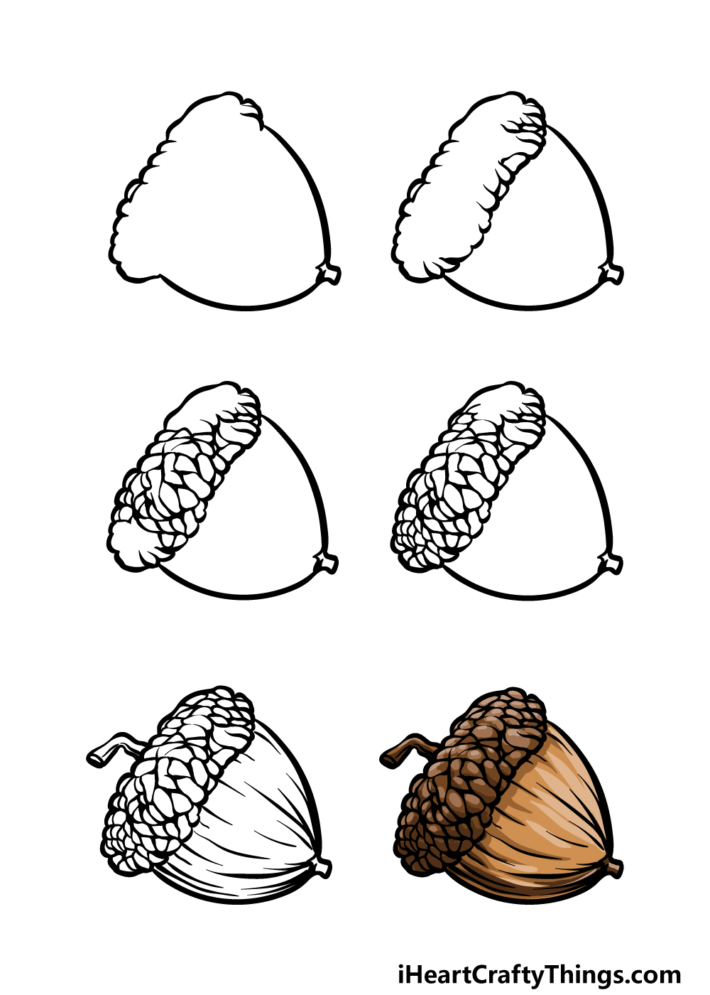 how to draw acorn in 6 steps