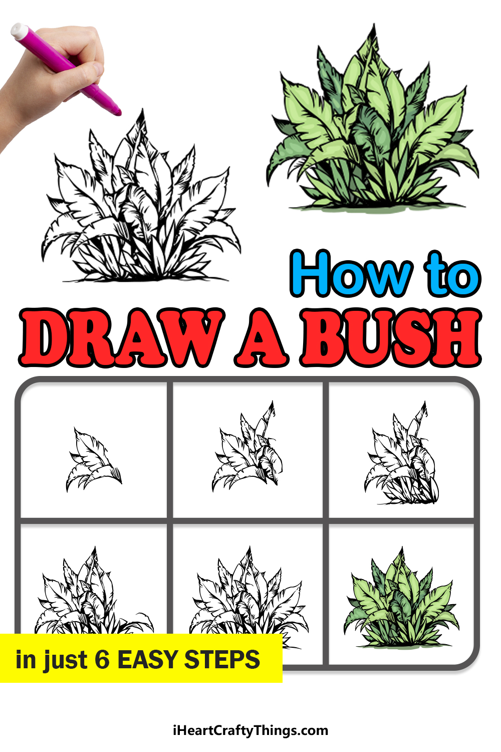 how to draw a bush in 6 easy steps