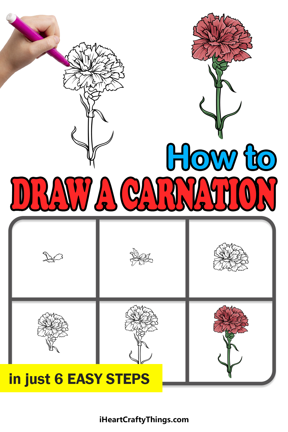 how to draw a carnation in 6 easy steps
