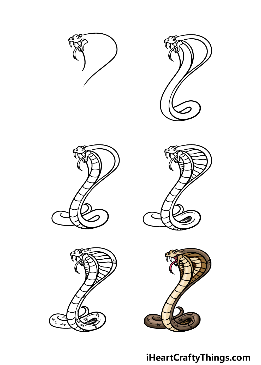 how to draw a cobra in 6 steps