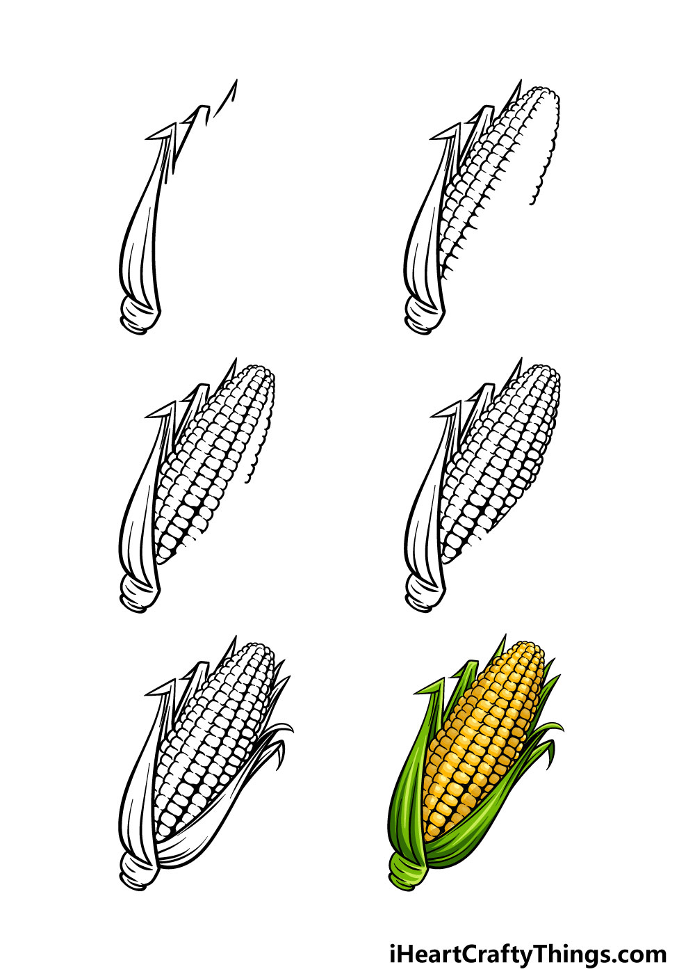 how to draw a corn in 6 steps