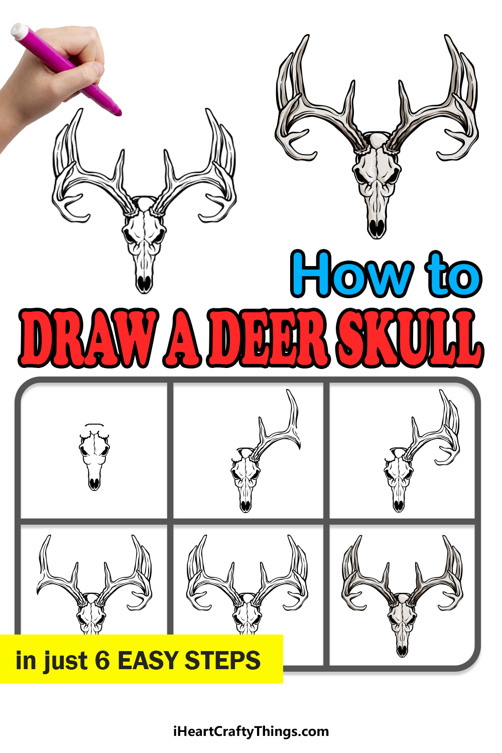how to draw a deer skull in 6 easy steps