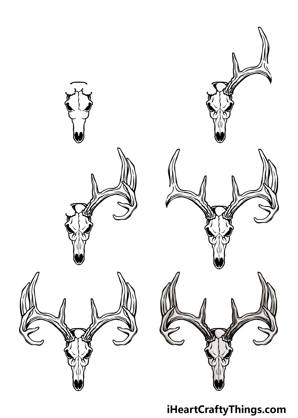 how to draw a deer skull in 6 steps