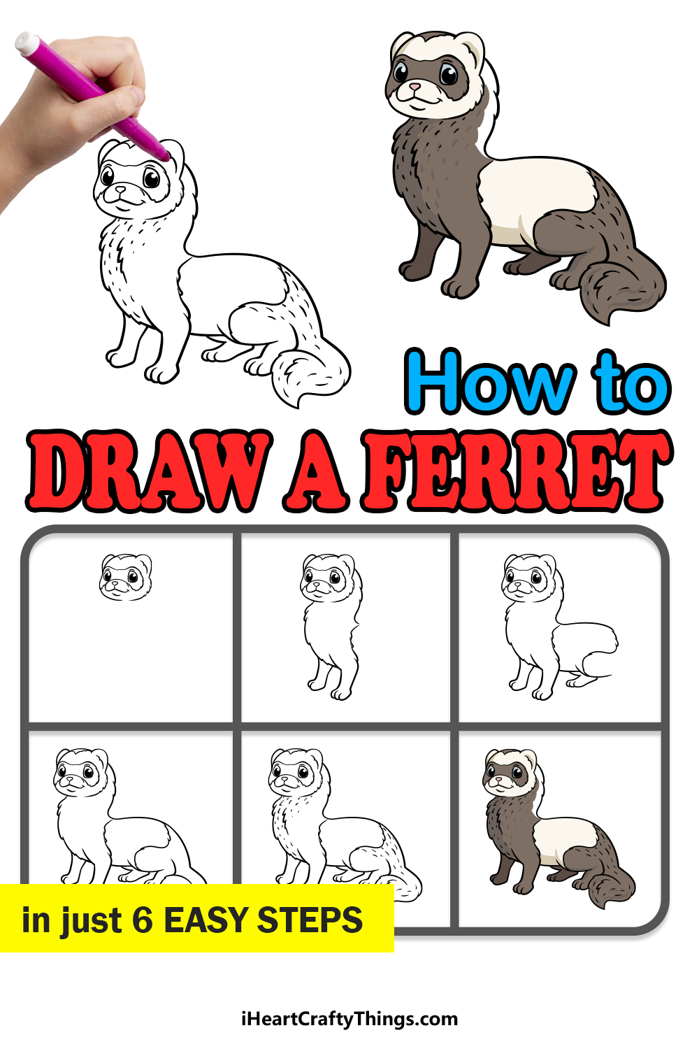 how to draw a ferret in 6 easy steps