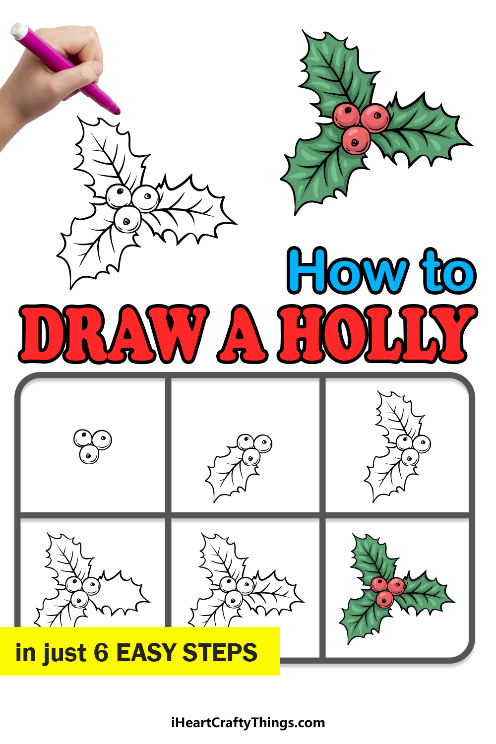 how to draw a holly in 6 easy steps