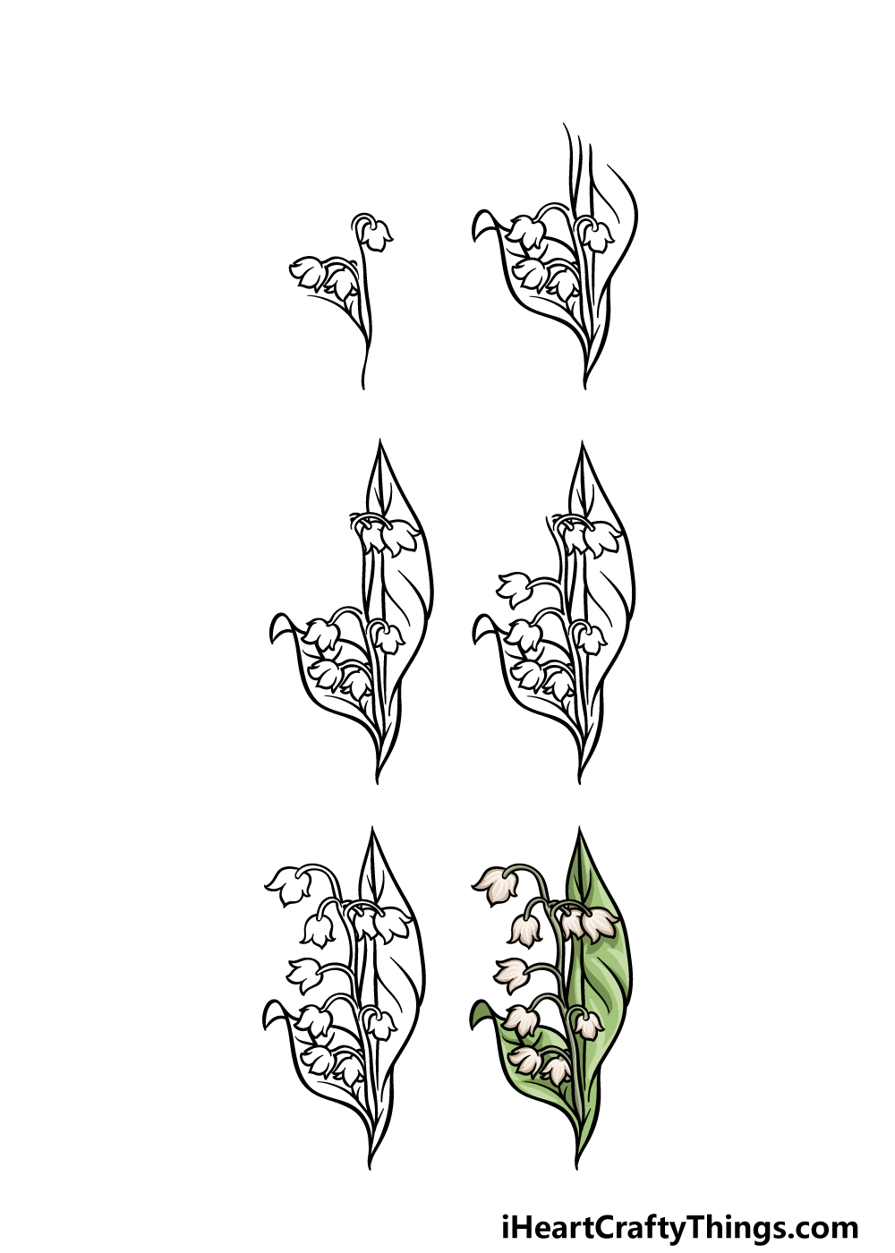How to draw Lily of the Valley in 6 steps