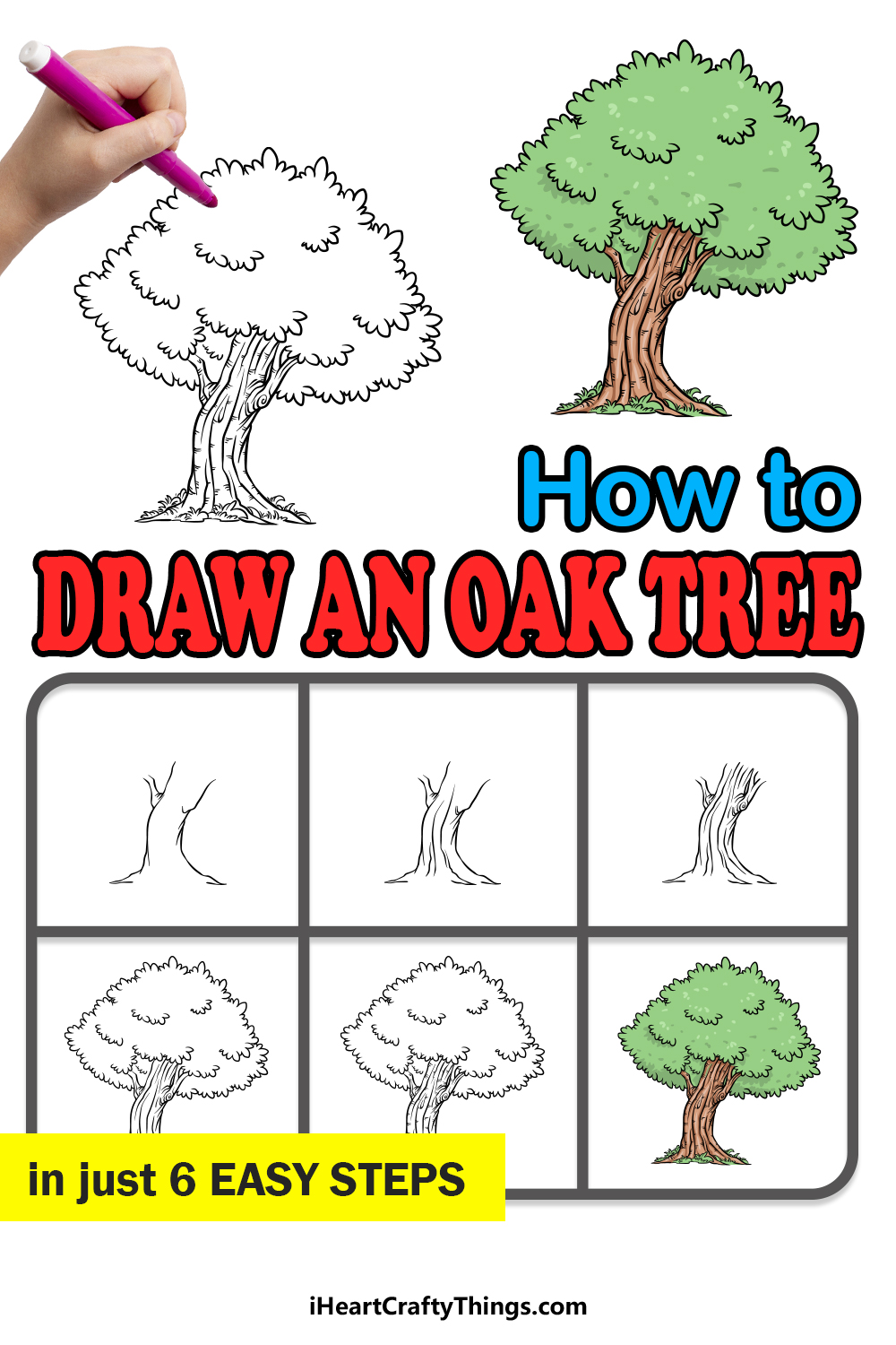 how to draw an oak tree in 6 easy steps