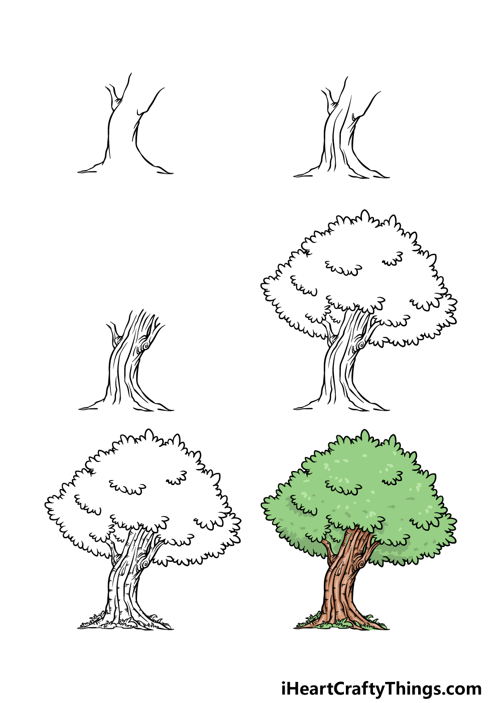 how to draw an oak tree in 6 steps