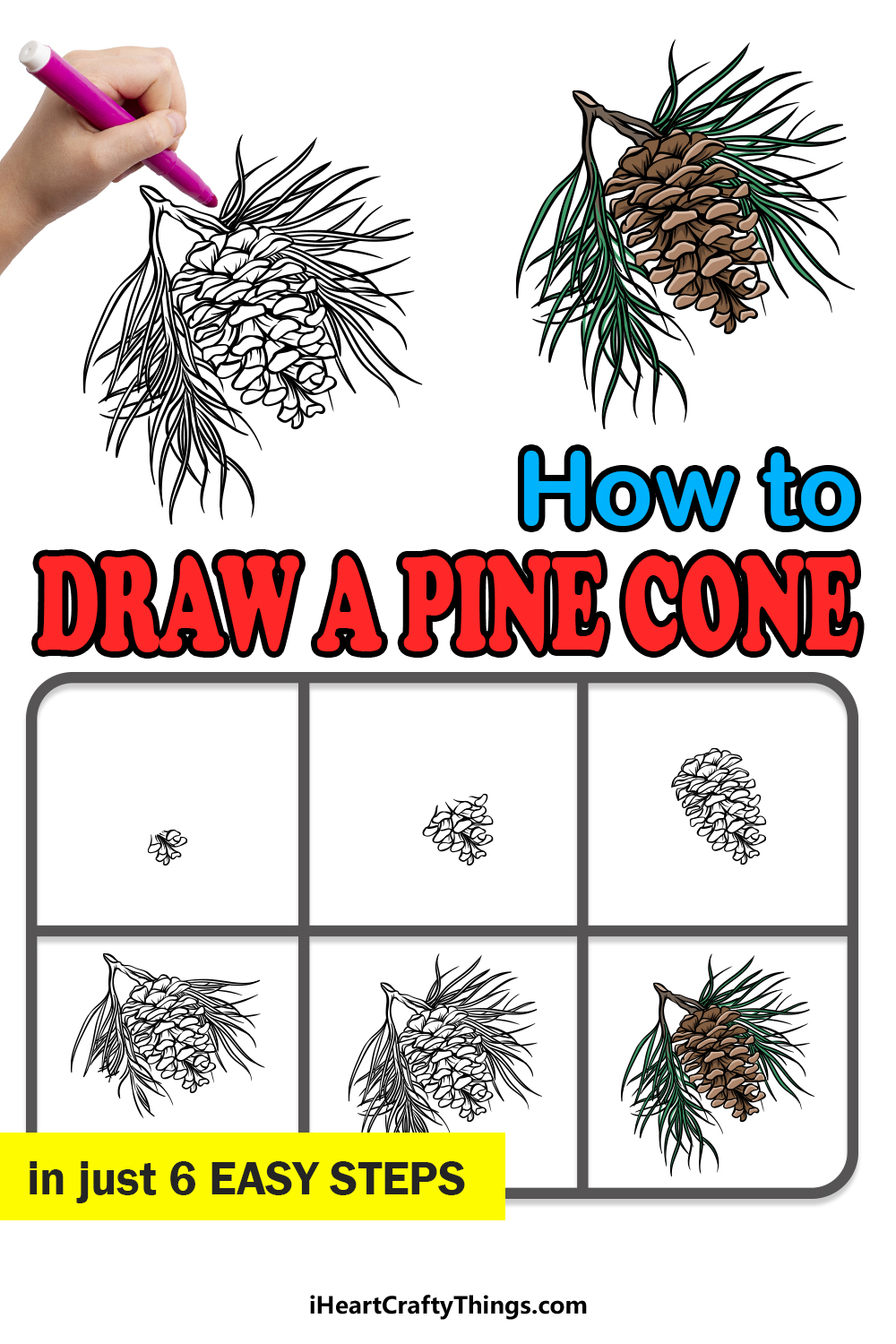 how to draw a pine cone in 6 easy steps