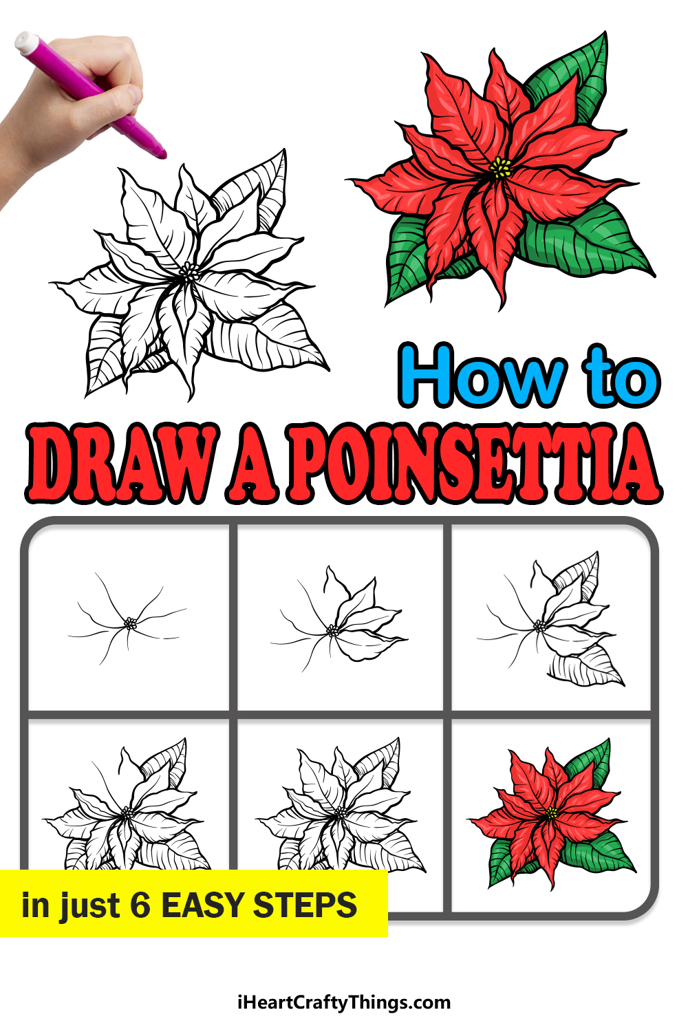 how to draw a Poinsettia in 6 easy steps