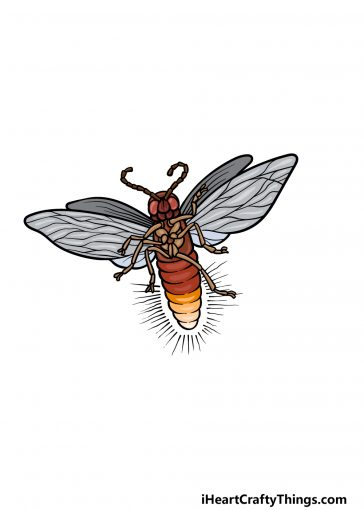 how to draw a firefly image