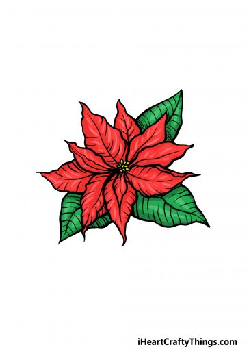 how to draw a Poinsettia image