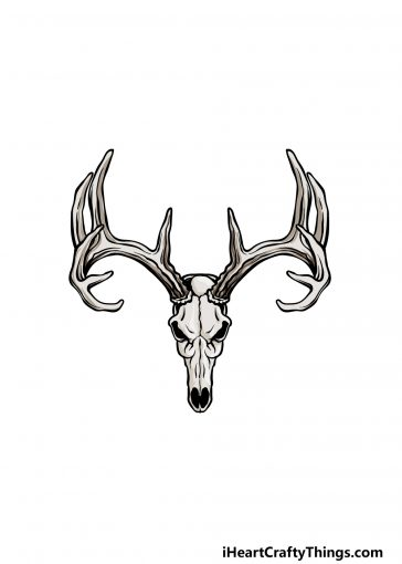 how to draw a deer skull image