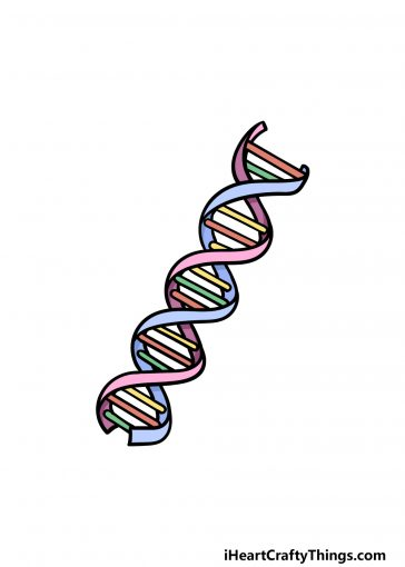 how to draw DNA image