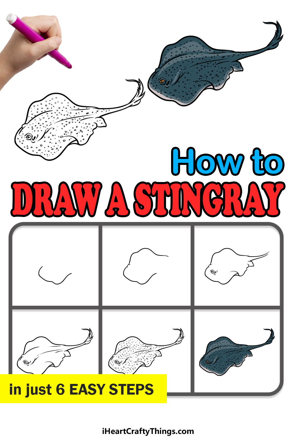 how to draw a stingray in 6 easy steps