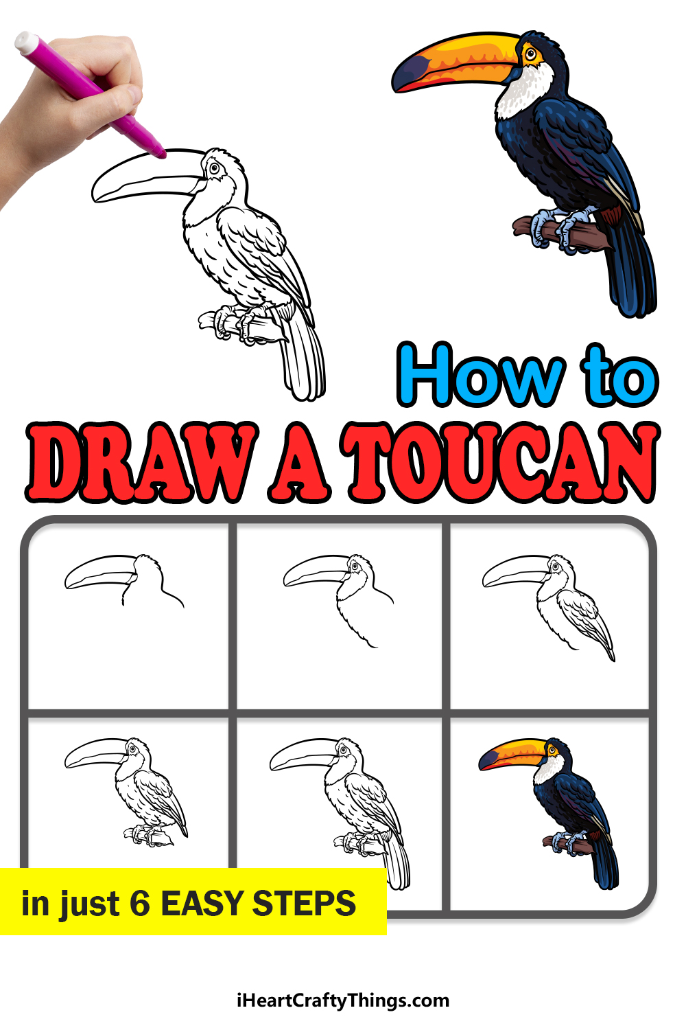 how to draw a toucan in 6 easy steps