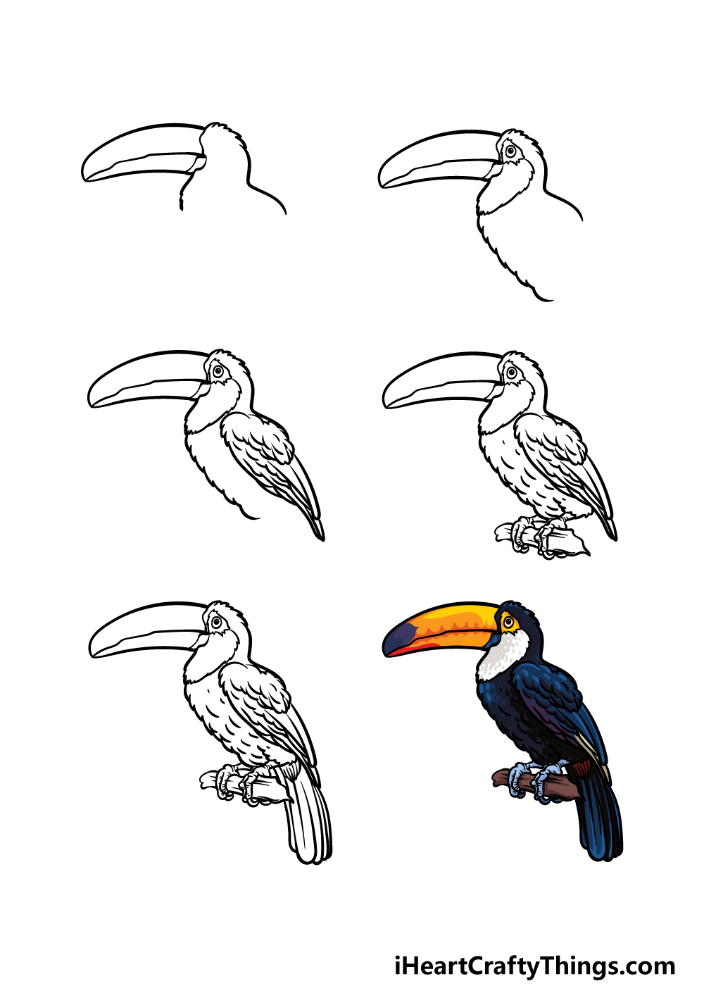 how to draw a toucan in 6 steps